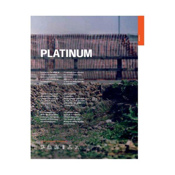 PLATINUM [700x700_WEB]